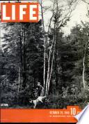 29 Oct. 1945